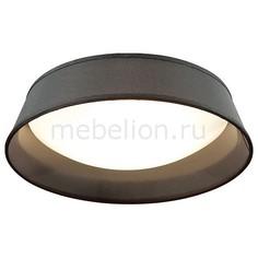Накладной светильник Sapia 4158/3C Odeon Light