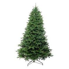 Царь елка Ель Амурская