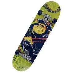 Скейтборд Larsen City 4