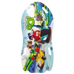Ледянка 1 TOY Angry Birds Т57214