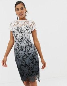 Кружевное платье-футляр с эффектом омбре Paper Dolls - Мульти