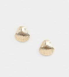 Золотистые серьги-гвоздики в форме ракушки DesignB London - Золотой
