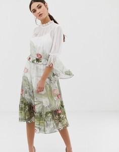 Платье миди с принтом и оборками Ted Baker Brooki wonderland - Мульти