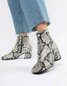 Ботинки со змеиным принтом ALDO Piella - Мульти