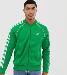 Спортивная куртка adidas Originals adicolor - Зеленый