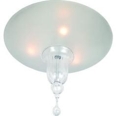Потолочный светильник Divinare 4002/02 PL-3
