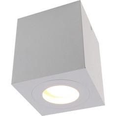 Потолочный светильник Divinare 1461/03 PL-1