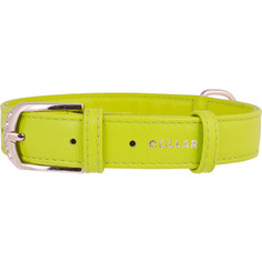 Ошейник CoLLaR Glamour без украшений ширина 35мм длина 46-60см лайм для собак (33225)