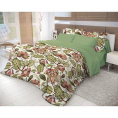 Комплект постельного белья Волшебная ночь Семейный, ранфорс, Nuts с наволочками 70х70 (716341)
