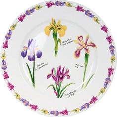 Тарелка обеденная Imari Ирисы (IMA0180H-A93AL)