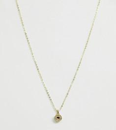 Позолоченное ожерелье с подвеской Ted Baker - Золотой