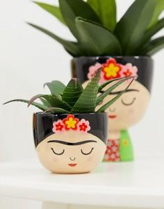 Небольшой цветочный горшок Sass & Belle Viva La Fiesta - Мульти
