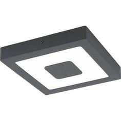 Уличный потолочный светильник Eglo 96489