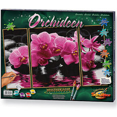 Картина-триптих по номерам Schipper Орхидеи 50х80 см