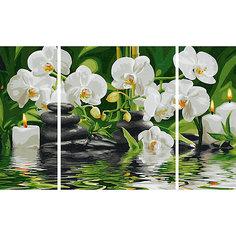 Картина-триптих по номерам Schipper Цветы Wellness-Oase, 50х80 см
