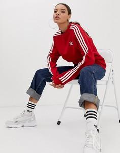 Красный свитшот с круглым вырезом и тремя полосками adidas Originals adicolor - Красный
