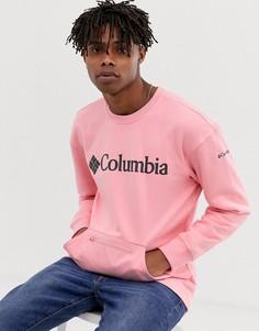 Розовый свитер Columbia CSC Fremont - Розовый