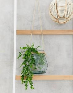 Стеклянный подвесной горшок для цветов ASOS SUPPLY - Очистить