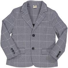 Пиджак Trybeyond для мальчика
