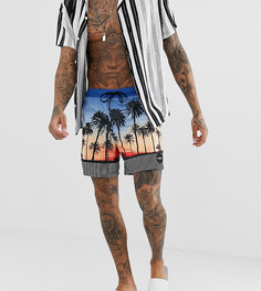 Синие пляжные шорты Quiksilver Sunvibes - Синий
