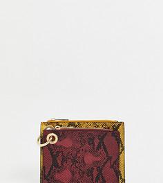 Разноцветный кошелек для монет со змеиным принтом New Look - Мульти