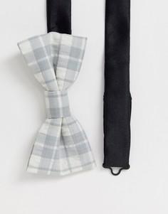 Серый галстук-бабочка в клетку Twisted Tailor - Серый