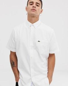 Белая оксфордская рубашка с короткими рукавами Lacoste - Белый