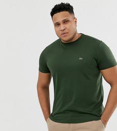 Темно-зеленая футболка с круглым вырезом и логотипом Lacoste - Зеленый