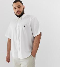 Белая легкая саржевая рубашка с короткими рукавами и логотипом Polo Ralph Lauren Big & Tall - Белый