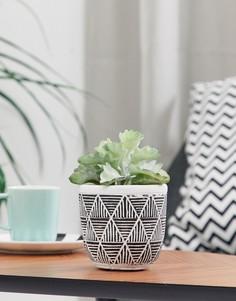 Горшок для цветов с узором и искусственным растением Candlelight - Черный