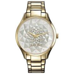 Наручные часы ESPRIT ES109022002