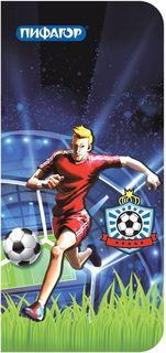 Пифагор Пенал-косметичка Футбол 226490