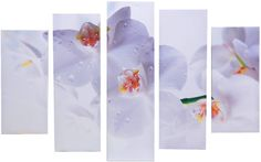 "Картина Постер-Лайн ""Белые орхидеи"", модульная, 1337015, 115 х 80 см"