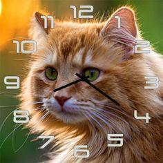 Настенные часы Kitch Clock 3001854