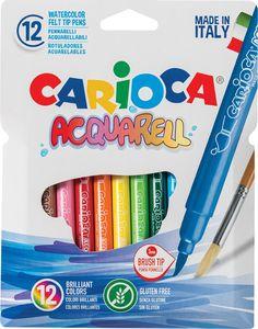 Фломастеры Carioca Acquarell, 245465, 12 цветов