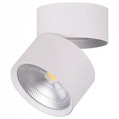 Накладной светильник AL520 32463 Feron