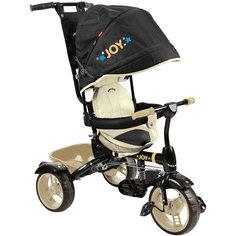 Велосипед трехколесный детский Nika ВД4/6 черно-бежевый