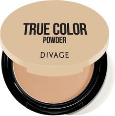 Пудра DIVAGE Compact Powder True Color, тон №04