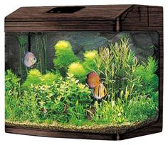 Аквариум для рыб Jebo 362R, с изогнутым стеклом, темное дерево, 95 л