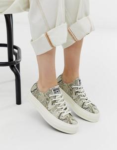 Кроссовки со змеиным принтом Converse Chuck Taylor Ox-Серый