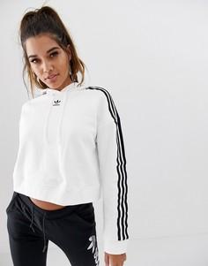 Белый укороченный худи adidas Originals adicolor