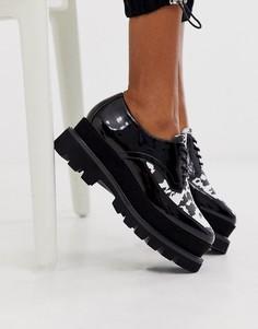 Туфли с принтом на платформе и шнуровке Truffle Collection-Черный
