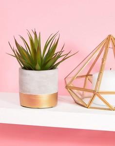 Керамический цветочный горшок с золотистой отделкой Sass & Belle-Мульти