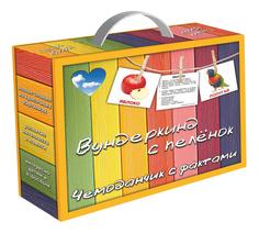 Развивающая игрушка Вундеркинд с пеленок Чемоданчик с фактами