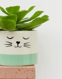 Цветочный горшок с принтом кошачьей мордочки Sass & Belle-Мульти