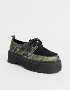 Массивные зеленые кожаные туфли на плоской подошве со змеиным узором ASOS DESIGN Marlon-Мульти