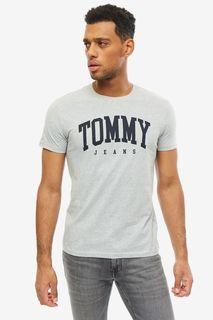 Футболка мужская Tommy Jeans DM0DM06501 038 серая M