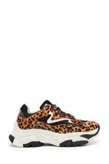 Леопардовые кроссовки Addict Ash