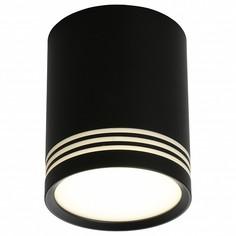 Накладной светильник Fortezza OML-100119-12 Omnilux