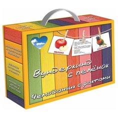 Набор карточек Вундеркинд с пелёнок Чемоданчик с фактами. Вундеркинд с пеленок 10x8 см 480 шт.